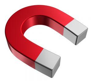 magnet-300x264-1-.jpg