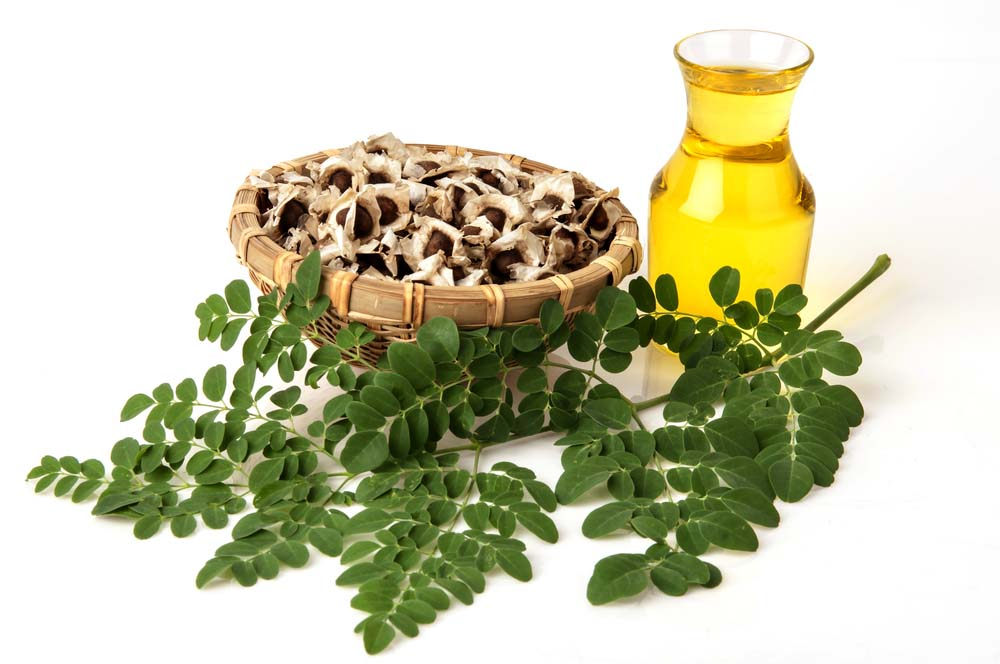 Moringa, It's The Most Nutritious, Healthiest Vegetable In The World.
