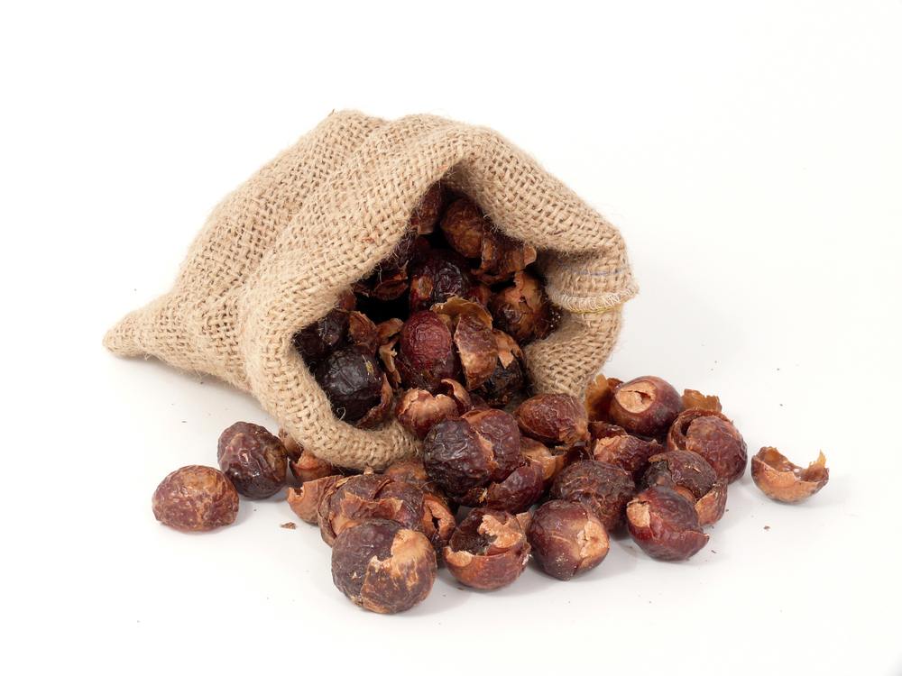 Best soap nuts
